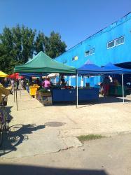 Piata Municipala Turnu Magurele.