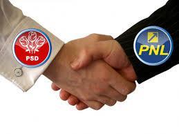 PNL Teleorman - alegerile au fost pierdute.